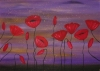 Red Poppies 63